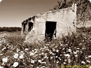 Mallorca_ungefähr_002_4k